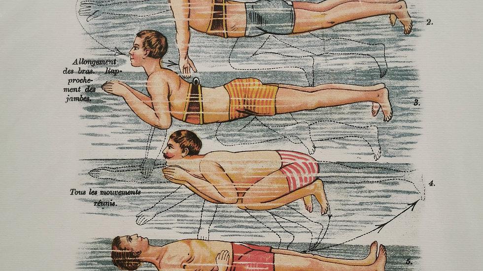 Affiche natation