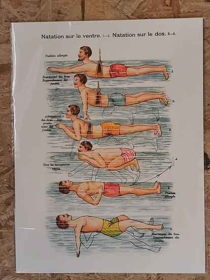 Affiche 50x70cm nageur