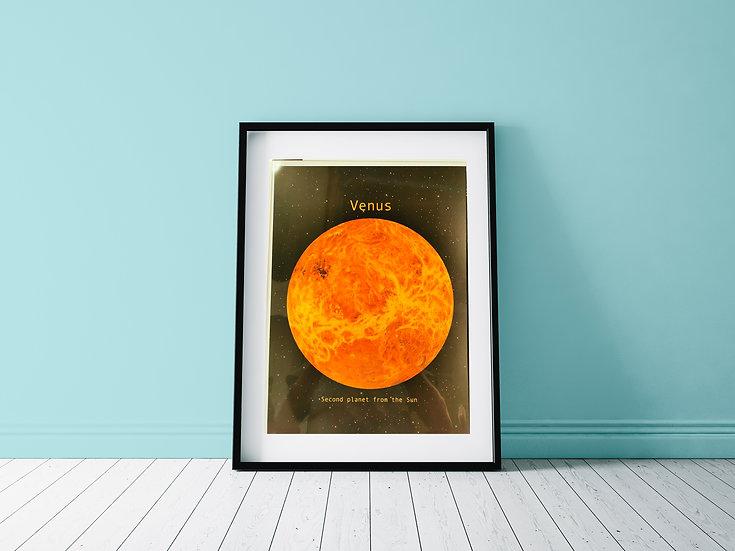 Affiche Venus
