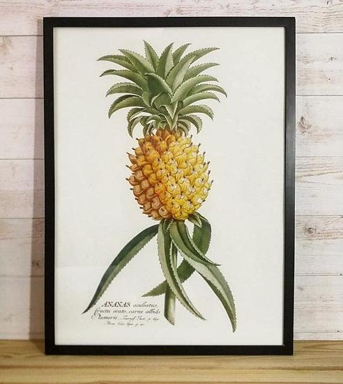 Affiche ananas