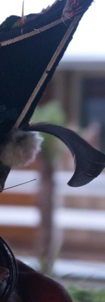 PNG 2012:  Highlands - Huli Wig Men (10)