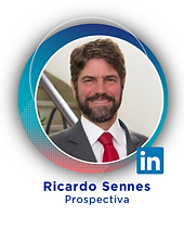 Ricardo Sennes 23.png