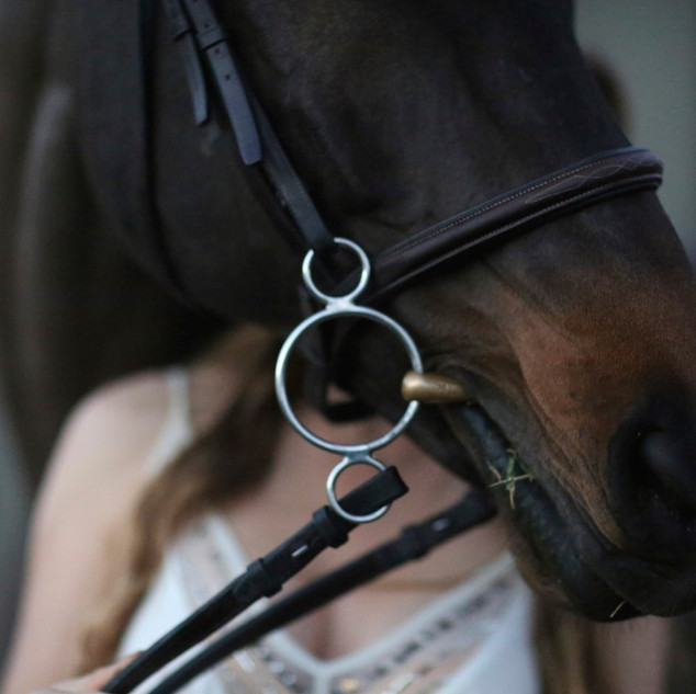 Charlie-horsehead.jpg