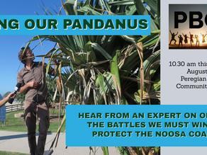 SAVING OUR PANDANUS
