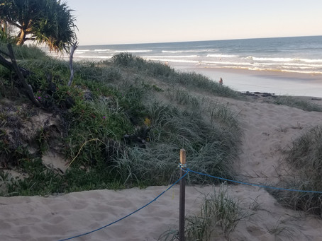 PBCA's submission on how Noosa should tackle Climate Change