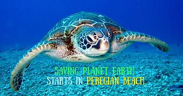 saving earth starts (2).png