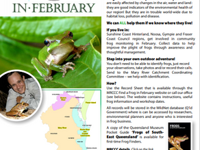 FIND A FROG IN FEBRUARY