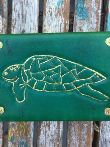 Sea Turtle Case