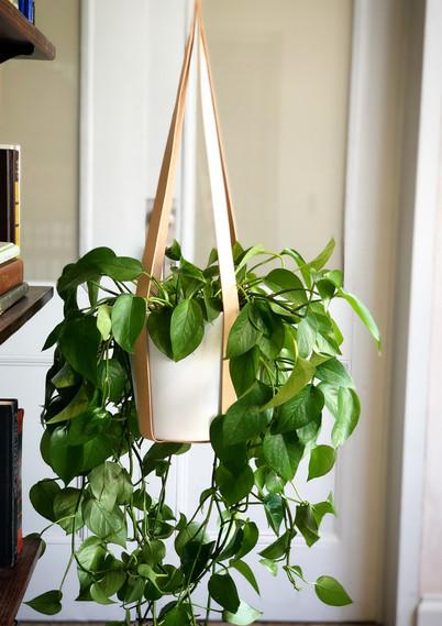 RAYS Design Minimalist Leather Plant Han