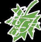 Logosol_1.png