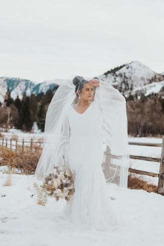 Sylvia's Bridals