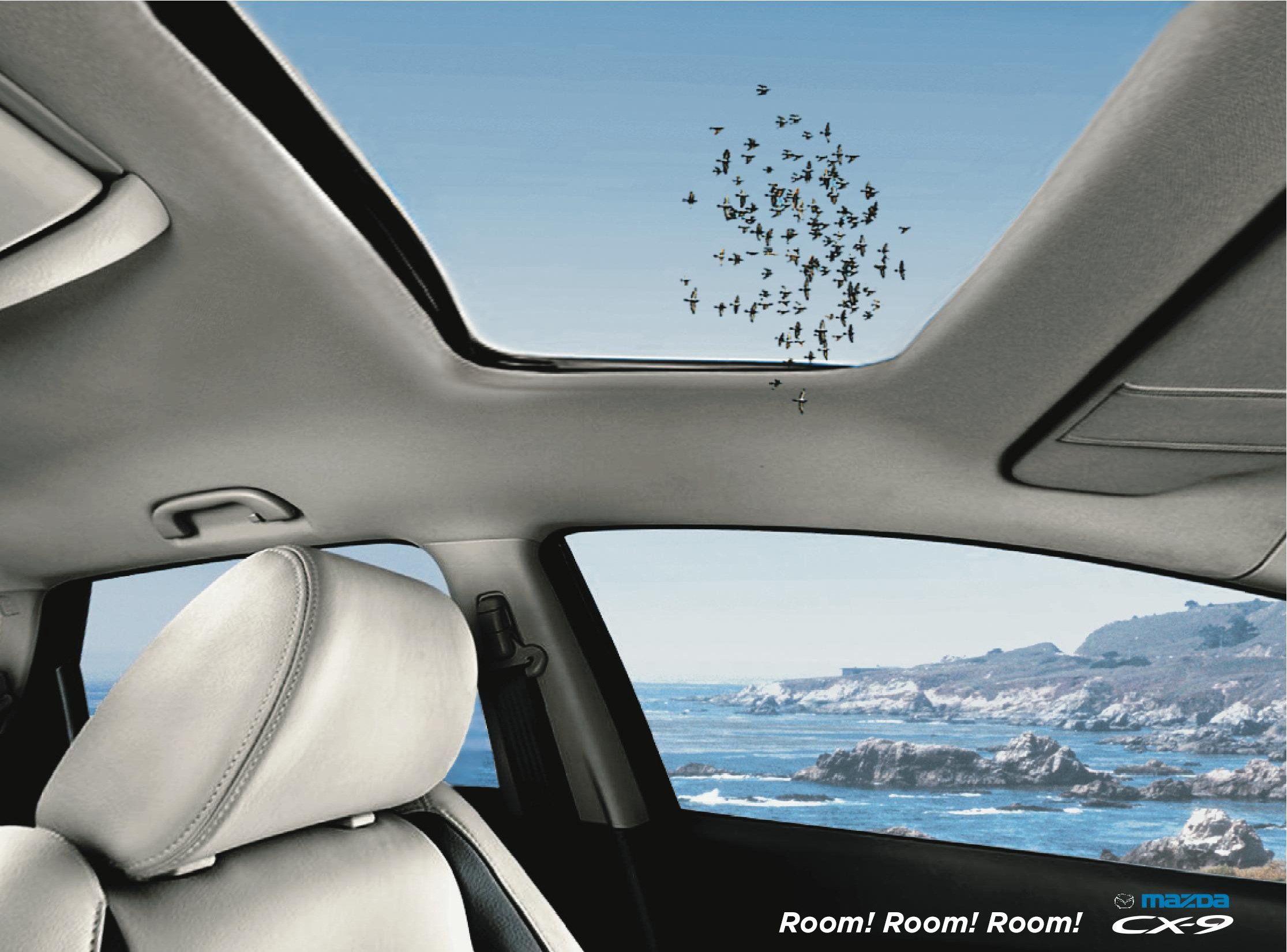 BIRDS-ROOM-ROOM- MAZDA CX-9