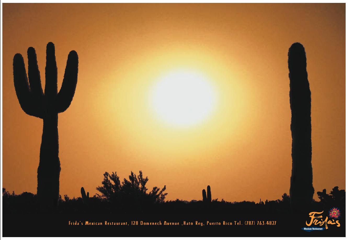 Frida's Mexican Restaurant-Cactus.jpg