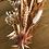 Thumbnail: couronne terracota