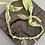 Thumbnail: Collier jaune madone