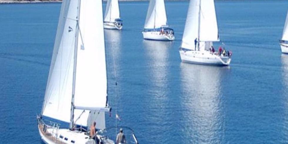 Channel Islands Sailing Tour