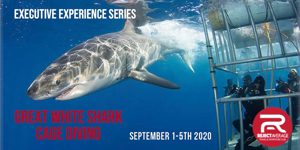 Great White Shark Cage Diving (AGAIN)
