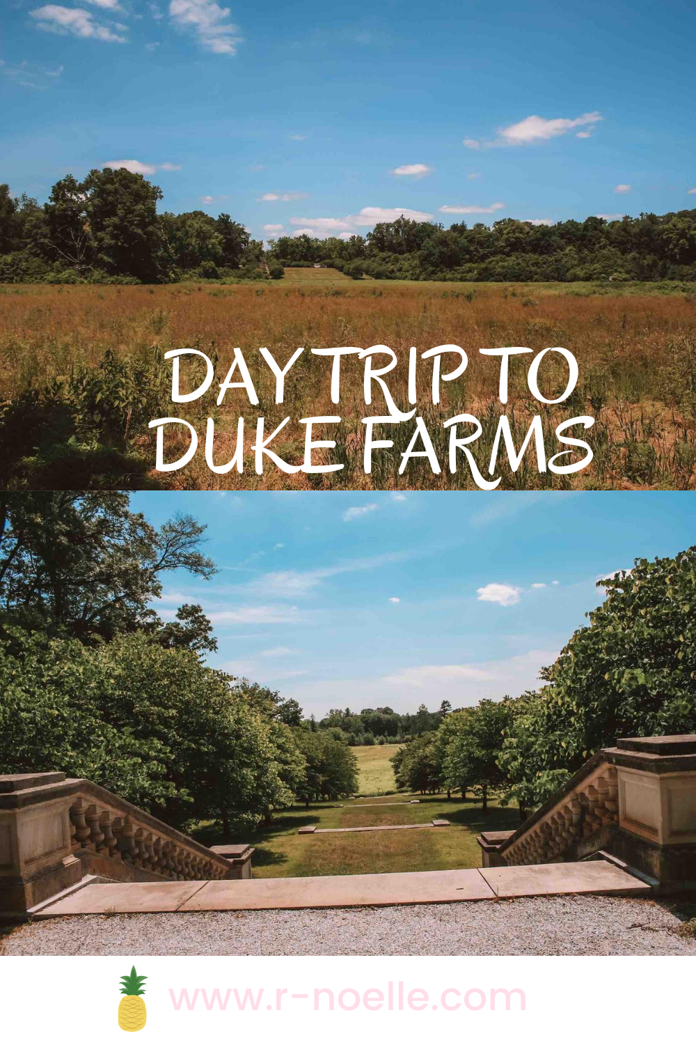 Duke Farm's has 18 miles worth of paved bike trails throughout the grounds. There are stunning gardens and places to enjoy the space. The best part, it is free!