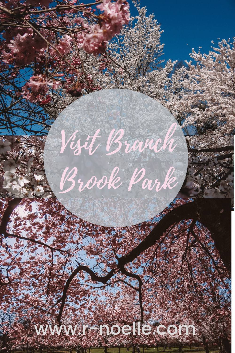 Pin to save to remember exploring Branch Brook Park, Newark New Jersey