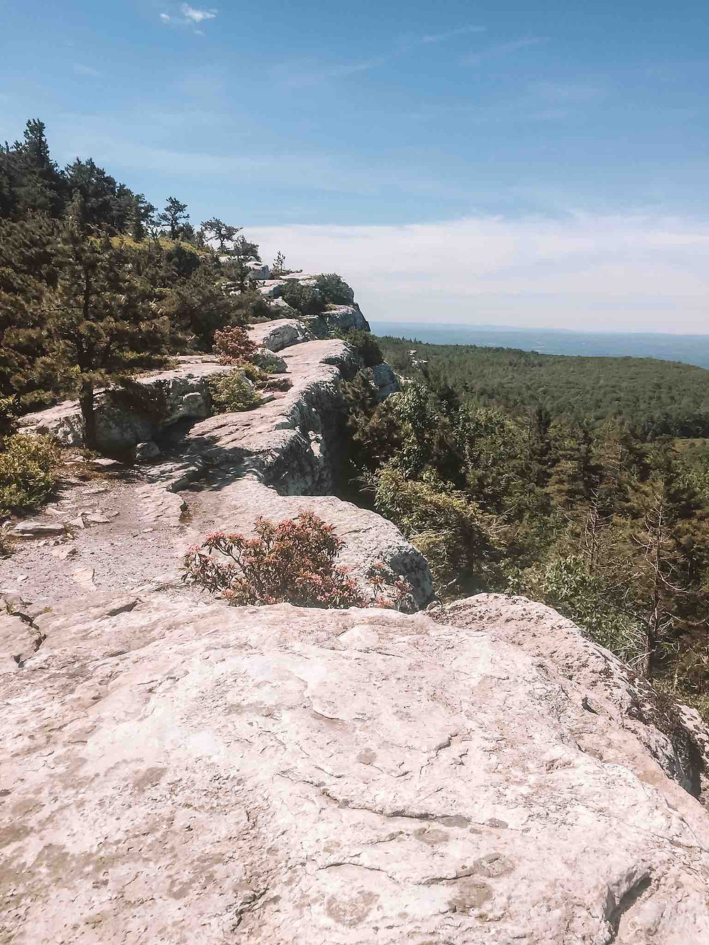 Camp at Shawngunk to climb in the gunks. Minnewaska is a state park to explore with many hiking trails. I suggest doing Gertrude noise!