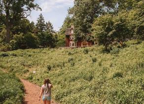 Day Trip to Summit, NJ Arboretums