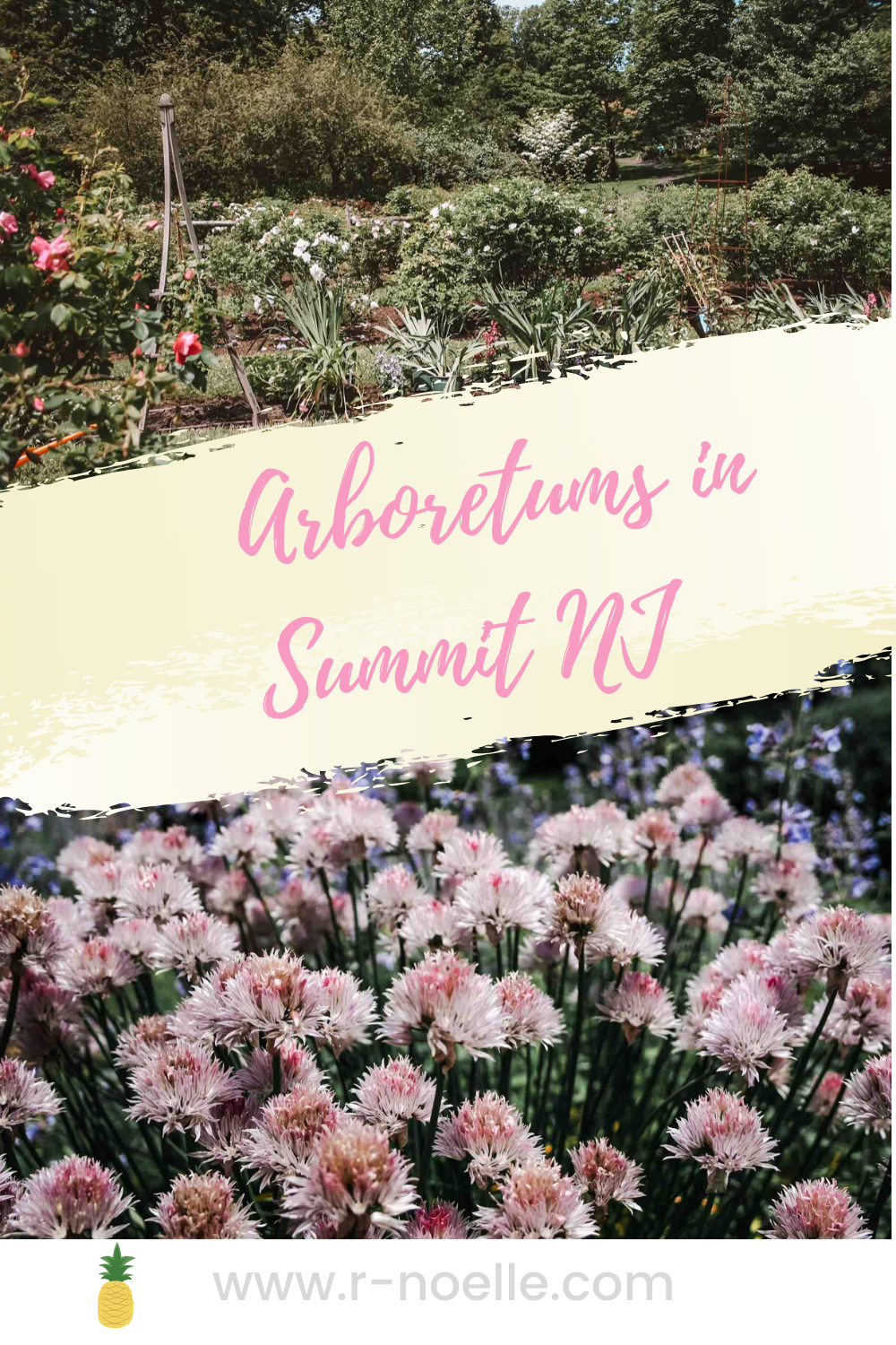 These outdoor arboretums in Summit, NJ are great spots for photoshops. Come here to explore, have a picnic and make a day of it.