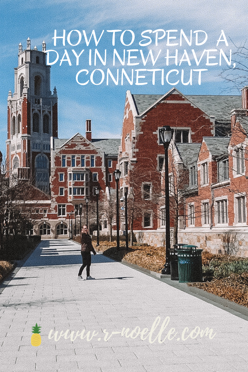 New Haven has so much history, here is how I spent my day in New Haven. This small city will not disappoint a peaceful day away. If you're looking for different scenery or something in your backyard, this guide will help you plan out your day!