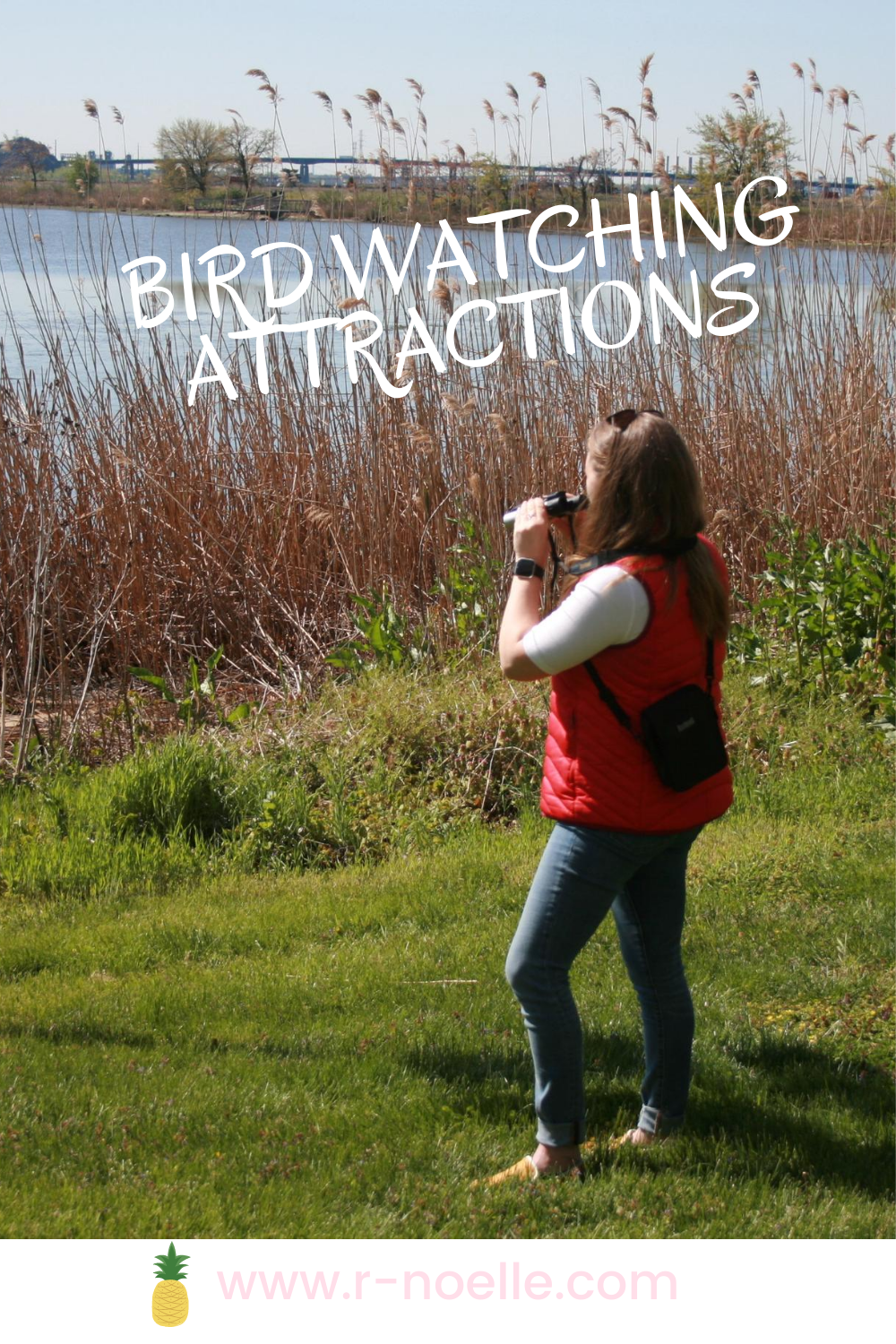 Bird Watching can be such an underrated activity. Northern New Jersey has so many different birds and there are so many beautiful nature spots for people to bring binoculars to get a better view. Check out this list of spots that are hidden gems in the garden state.