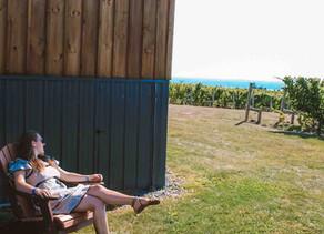 A Day Trip to Seneca Wine Trail