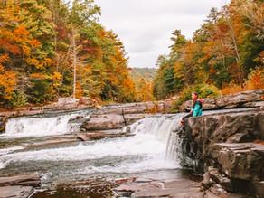 Neversink River Waterfall Foliage Hike