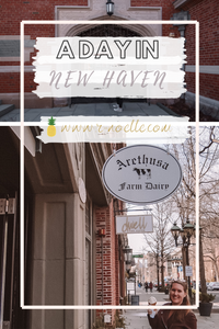 Things to do in New Haven Connecticut!