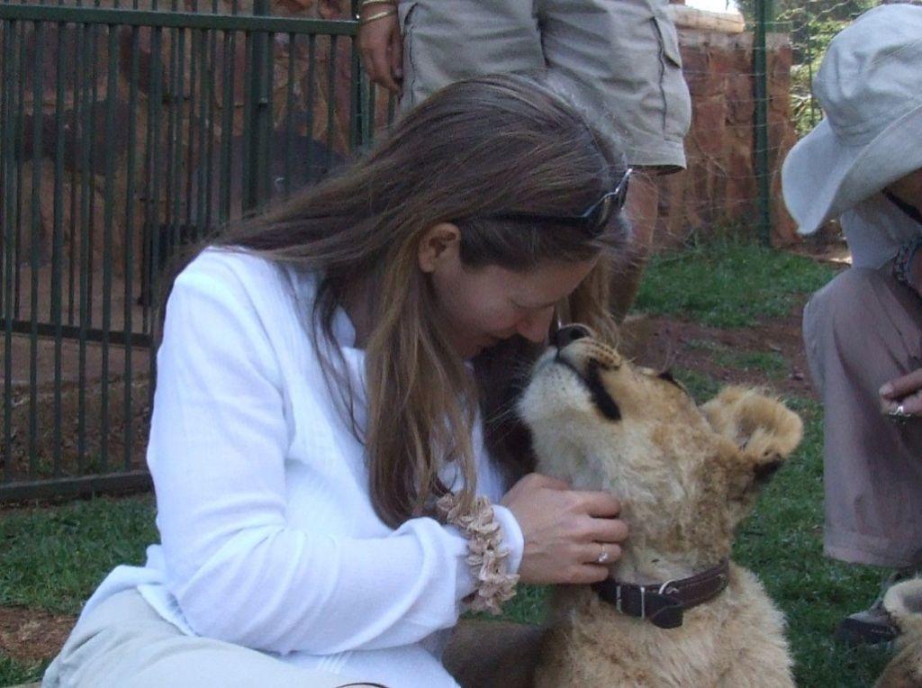Lion's kiss