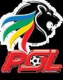 200px-Premier_Soccer_League_logo.svg.png