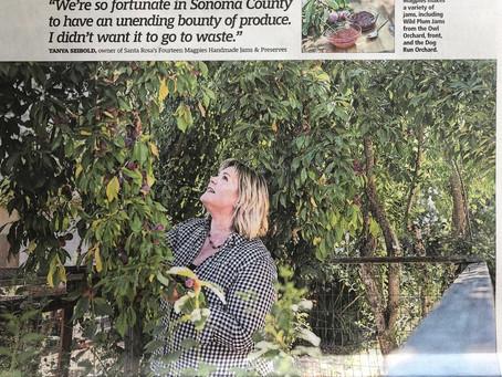 The Press Democrat: Sonoma Life      'Holding On To Harvest'