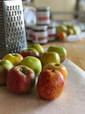 grav apples 4.jpg