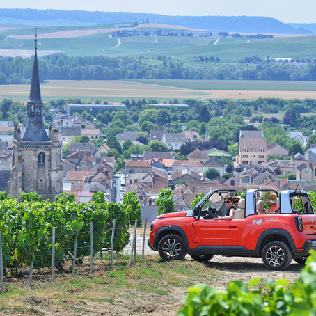 The Coteaux Champenois of Aÿ-Champagne