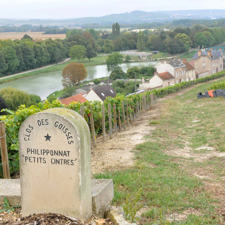 The Clos - A list of all the walled vineyards of Champagne