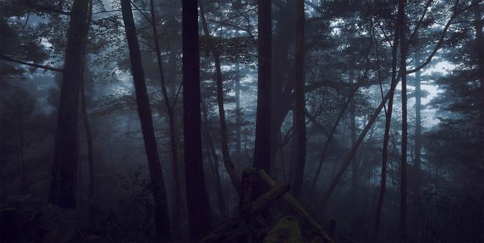 S_15 Dark Forest.jpg