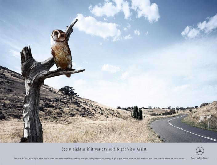 S_014 Mercedes Owl.jpg