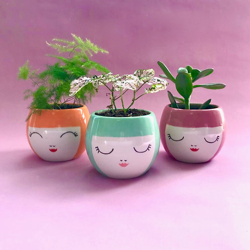 Not Just a Pretty Face Planter