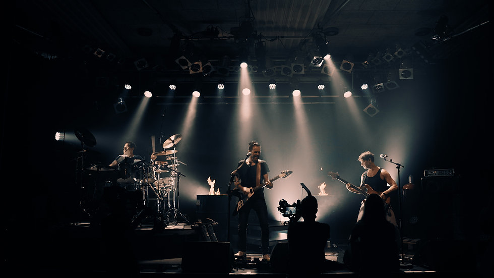 WeLive - Das Online-Musikfestival