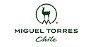 torres_chile.png