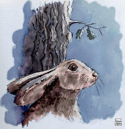 The Hare and the Moon - Sophie Shaw - Ha