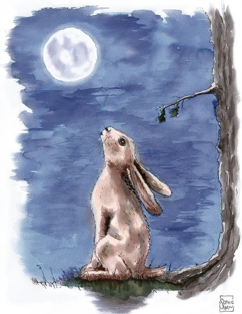 Hare gazed up at the Moon