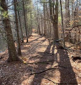 JB Path.jpg