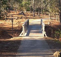 PV bridge.jpg