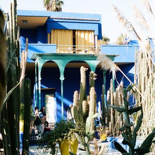 Jardin Majorelle- Le Jardin Secret- Marrakech