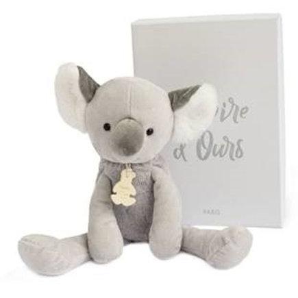 Koala Histoire d ours