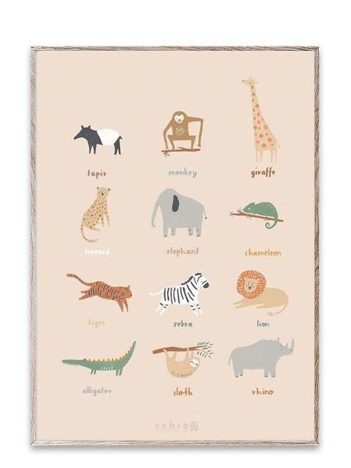 Poster chambre sebra animaux