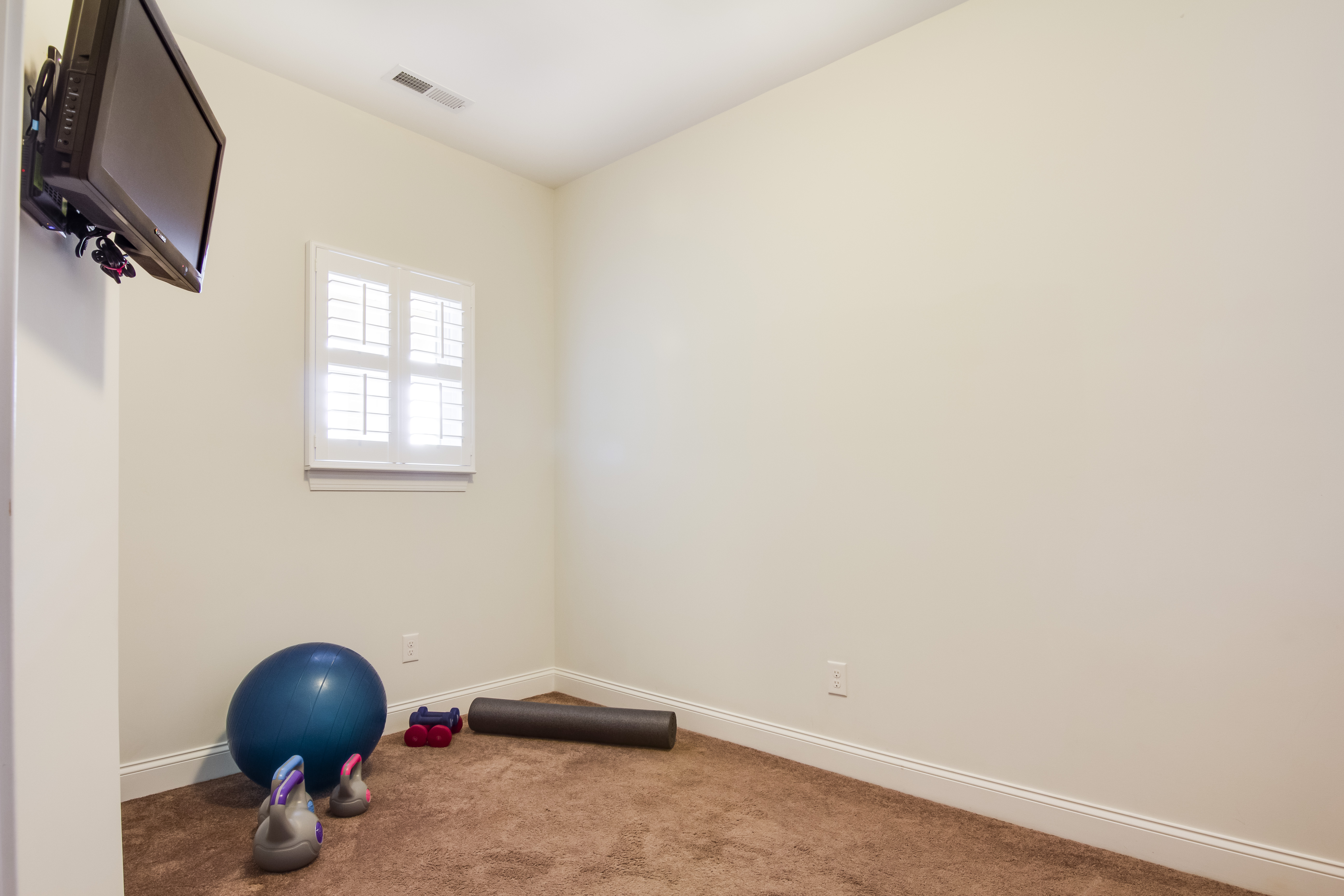 Bonus/Exercise Room